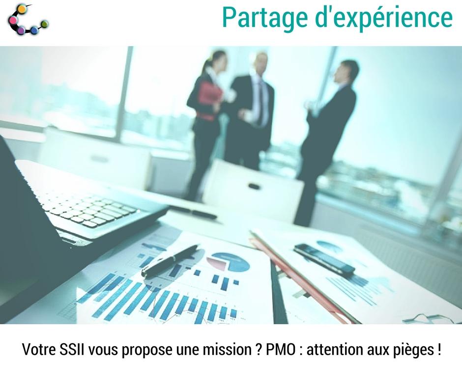 pmo, blog, partage experience, mission, ssii, consultante, ingénieur d'études, projet informatique